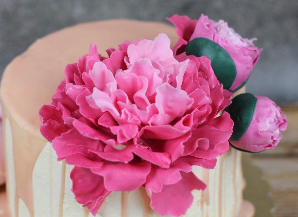 Jagodowy tort urodzinowy z piwonią i różą Piwonia z lukru na tort urodzinowy, orchideli - różowa piwonia z lukru