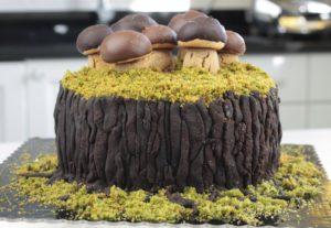 orchideli tort dla prawdziwego mężczyzny tort pieniek z grzybkami i mechem, tort z borowikami dla grzybiarza, grzybobranie