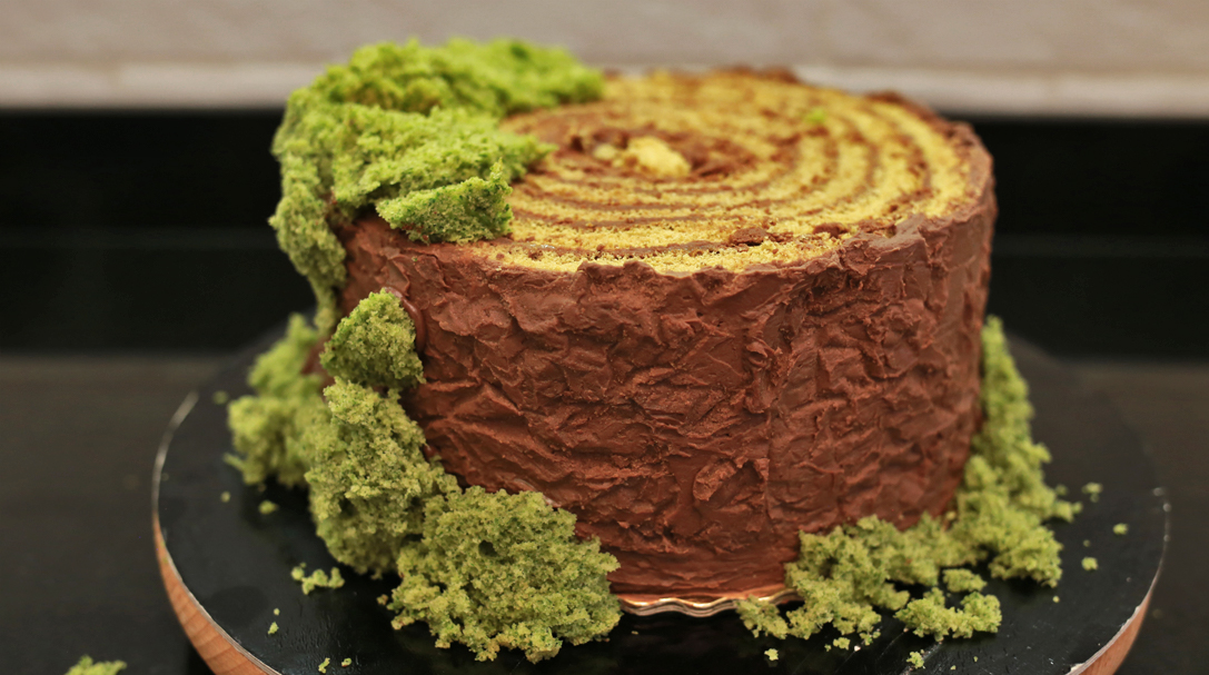tort pniaczek z jeżykami, przepis na tort dla chłopaka, tort dla mężczyzny, dla taty, dla dziadka, orchideli